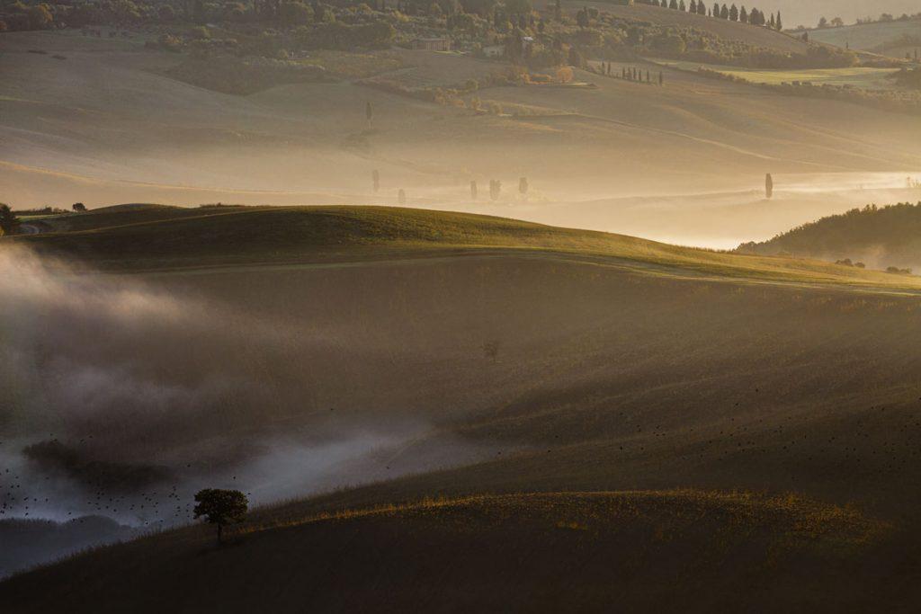 landscape_filippo_gabutti_07