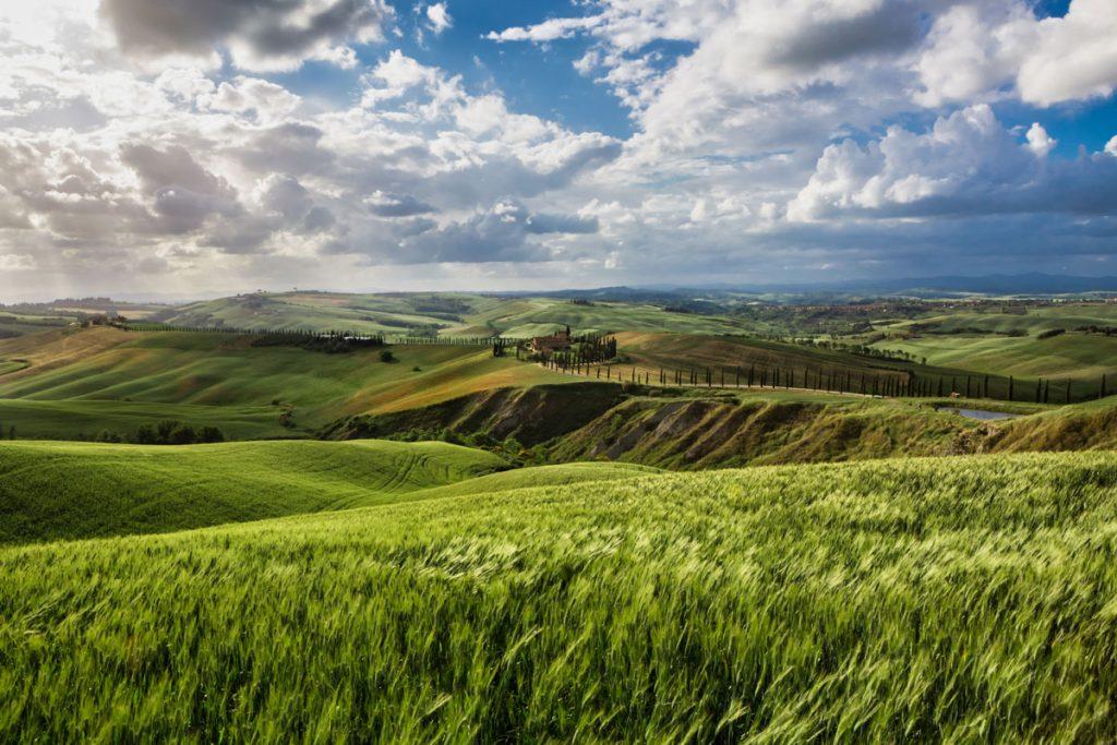 landscape_filippo_gabutti_13