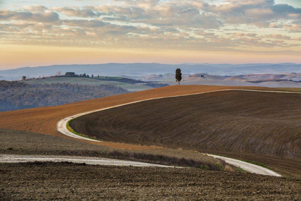 landscape_filippo_gabutti_14