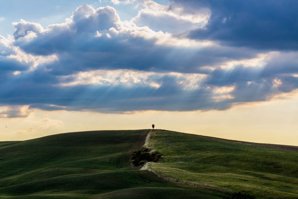 landscape_filippo_gabutti_27